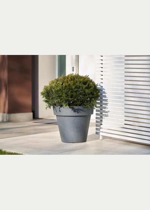 pianta arredo nasconde condizionatore in balcone