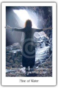 Gaian Tarot Nine of Water