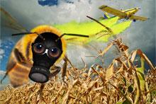 Bienensterben Maske