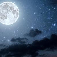 Aussaat nach den Mond Phasen