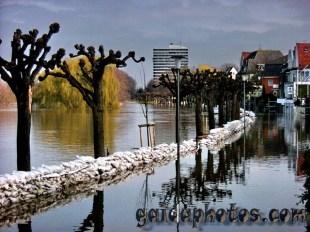 Köln Rodenkirchen: Rhein Hochwasser