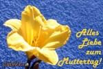 08.05.2011: Muttertag und kein verkaufsoffener Sonntag in Köln