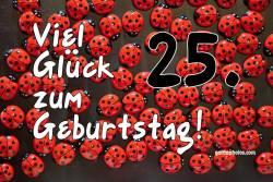 Karte 25. Geburtstag Marienkäfer