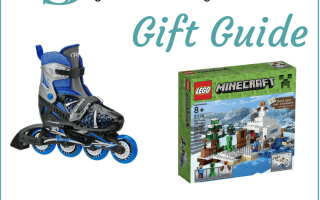 Gift Guide for 9 Year old boy