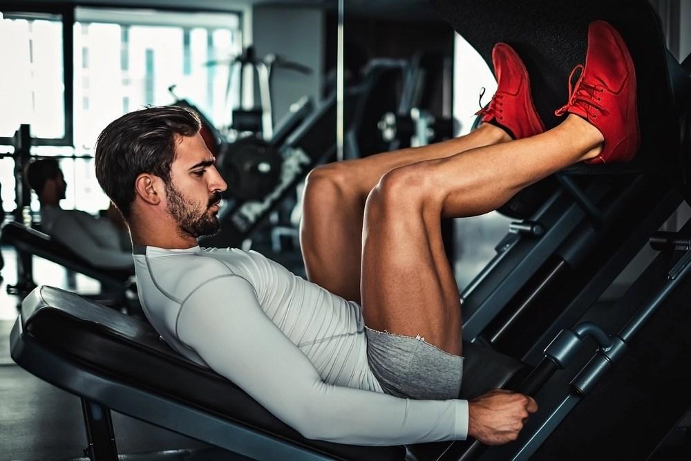 big leg muscles