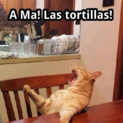 ama-las-tortillas