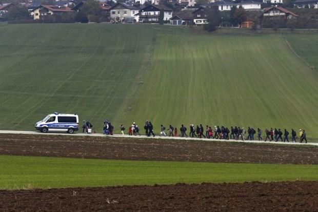 Inmigrantes son escoltados por la policía alemana a un centro de registro, tras cruzar la frontera con Austria en Wegscheid, cerca de Passau, Alemania (Michael Dalder, Thomson Reuters . 20 de octubre de 2015).