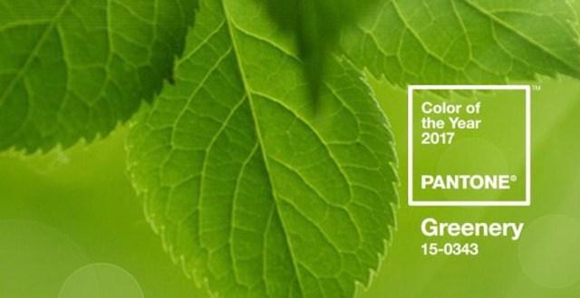 Pantone en 2017: la vegetación reinará