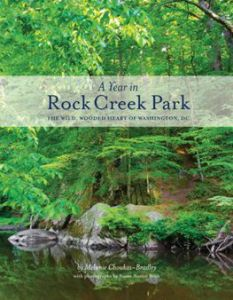 A Year in Rock Creek Park by Melanie Choukas-Bradley