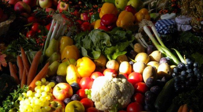 Solidarisch Landwirtschaften – Zukunftsidee für Ammerbuch