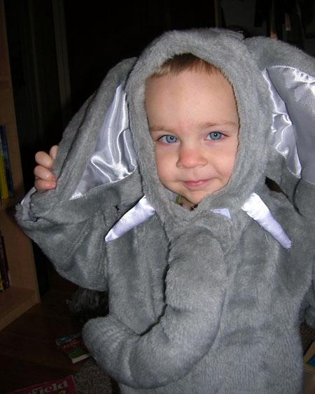 Lego in his elephant costume