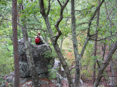 Trackler Mountain, Mark Twain National Forest - Madison County, MO