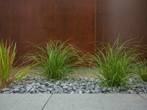 raffinierte gartengestaltung raffinierte gartengestaltung: gräser im garten - galanet