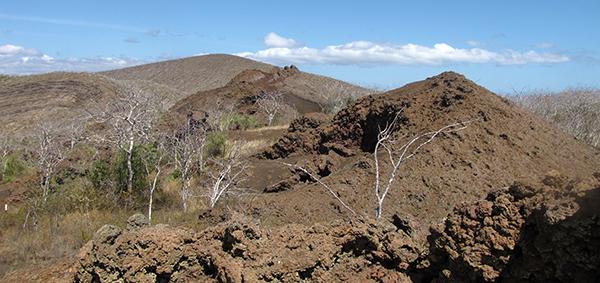 Floreana Gets Complete Biodiversity