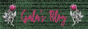 galasblog-logo-rose