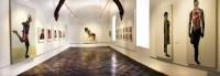 Exposicion Rogelio Manzo Bellas Artes
