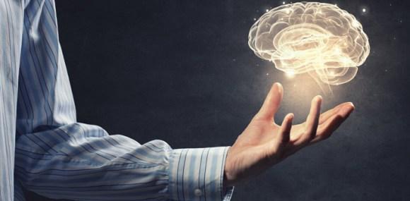 Cerebro y política
