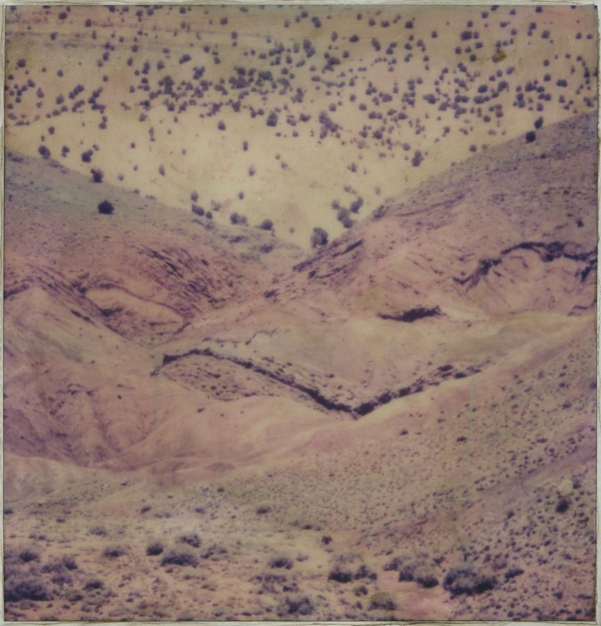 09 Landscape #1 FLORE MAROC