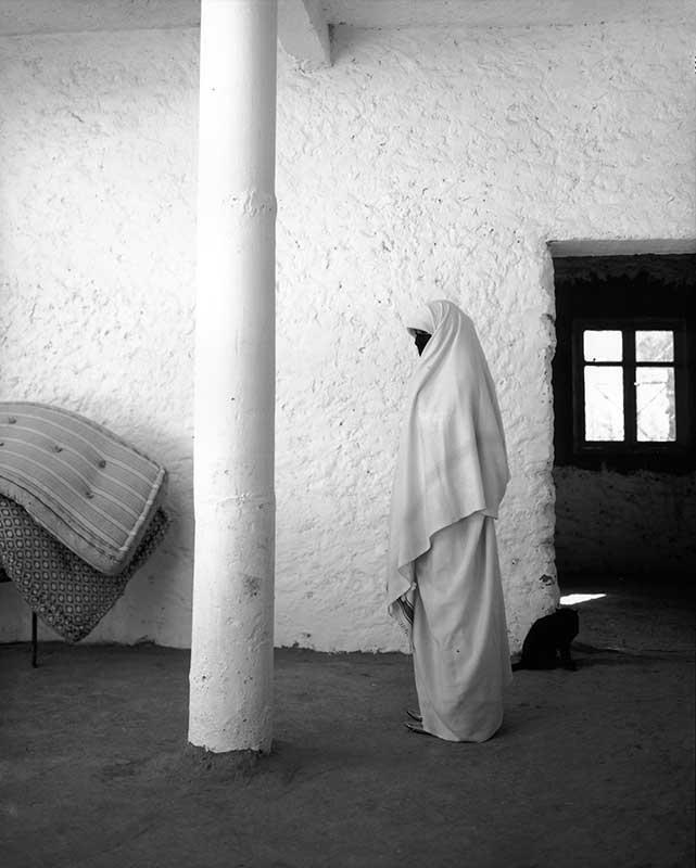 Veil 06 ©Diana Lui