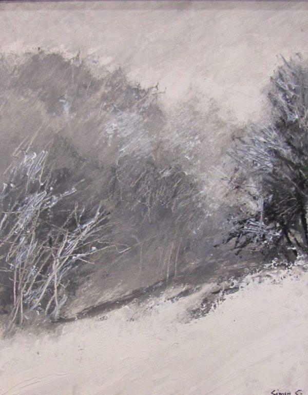 Galerie Caractères Neige peinture Simon C.