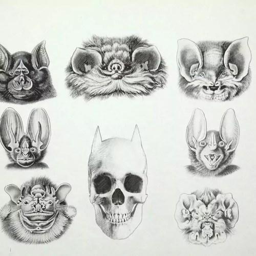 Batman_s skull - Fabrice Le Henanff