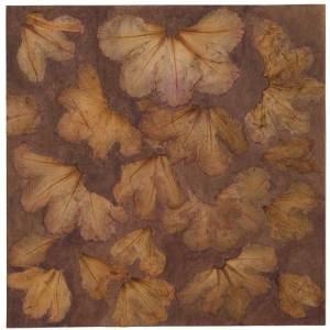 Herbier - Rhododendron - Jardin de Claudine S. 22,5 x 22,5 cm