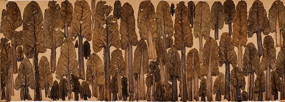 Brassica rapa - chou rave, 45 x 128 cm, 2007. Photo : © David Cueco