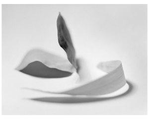 Argentique sur papier baryté, 2017. 70 x 90 cm.e sur papier baryté, 2017. 70 x 90 cm.