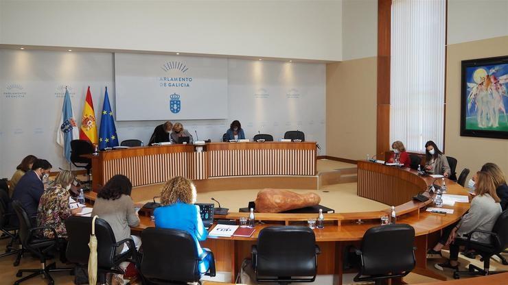 Os deputados durante a comisión de Sanidade