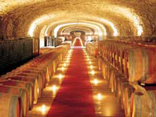 wine cellars visits Tuscany