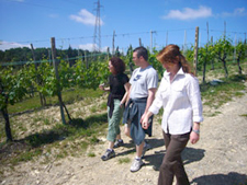 Wine tasting tours in Tuscany