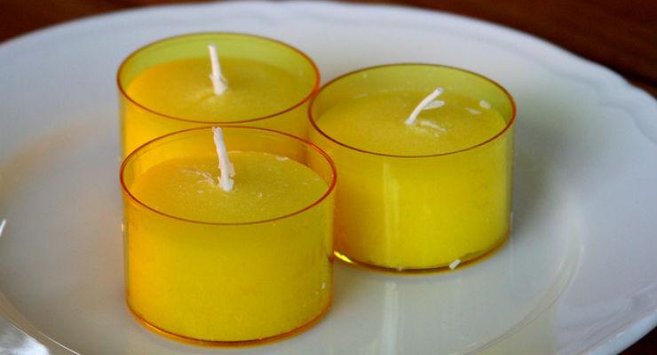 Contro le zanzare la citronella non serve