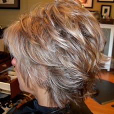 Highlights for greying brown hair hairsstyles photos of real hair behind my chair with a brief description pmusecretfo Images