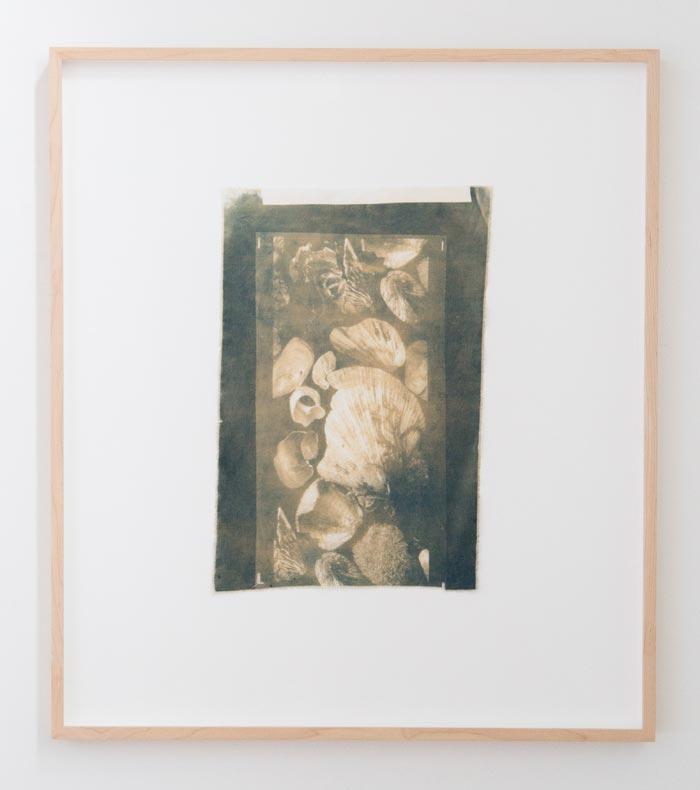 Anna Niskanen, Archive, 2019. Cyanotype on cotton, 31x48cm