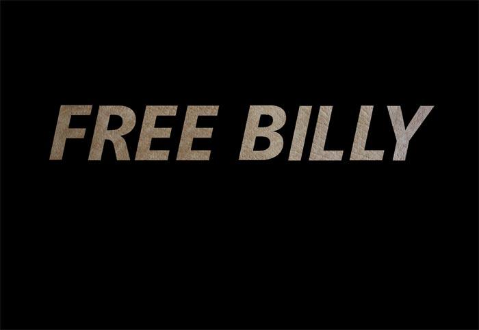 Anna Pekkala: Free Billy
