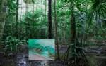 Kati Roover, Anaconda (videostill teoksesta Coexistence, kuvaaja: Kati Roover)