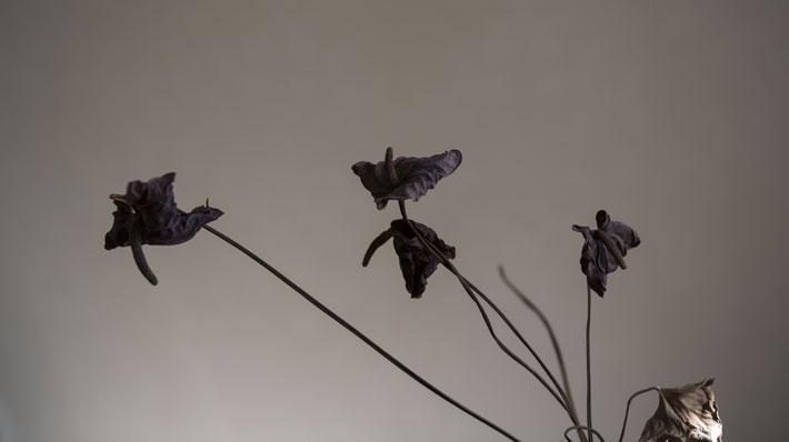 Leena Ylä-Lyly: Kurjet, 2015, 53 x 93cm, kehystetty pigmenttivedos dibondilla