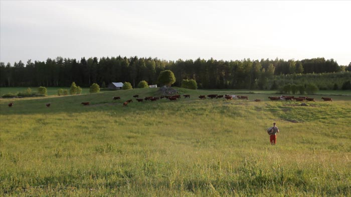 Mikko Haiko, still from the video work The Meadow (2017)