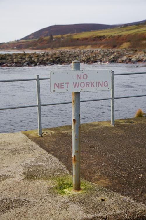 NO NET WORKING
