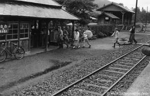 trains254
