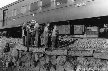 trains255