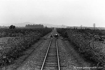 trains270