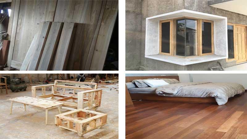 manfaat kayu manglid
