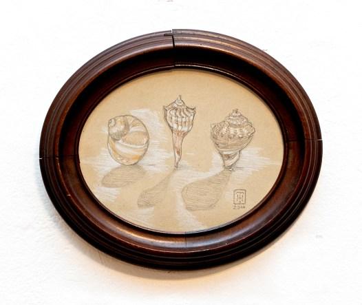 Dancing Seashells Graphite $95.00