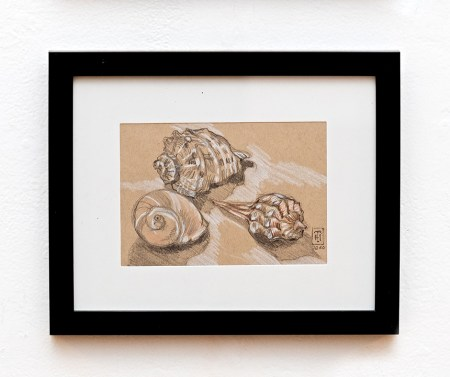 She Sells Seashells by the Seashore Graphite $95.00