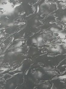"Rainy Pine Photograph 8 1/2"" x 11"" in black frame $36.00"