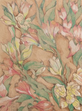 Alstroemeria Closed Prismacolor Matted & framed $145.00