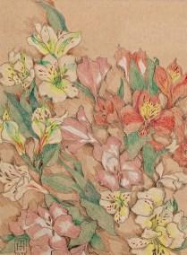 Alstroemeria Open Prismacolor Matted & framed $145.00