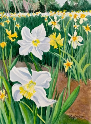 Daffodil Field Watercolor Matted & framed $875.00