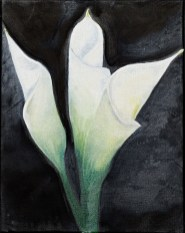 Untitled (Calalily) Oil on canvas $55.00